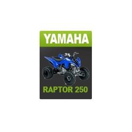 Yamaha 250 Raptor