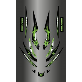 Kit décoration Rockstar Vert pour Seadoo RXT 215-255