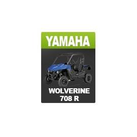 Kit déco Yamaha Wolverine