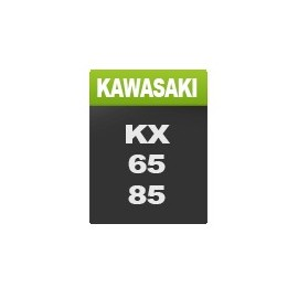 Kawasaki Nens