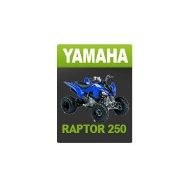 Yamaha 250 Rapinyaire