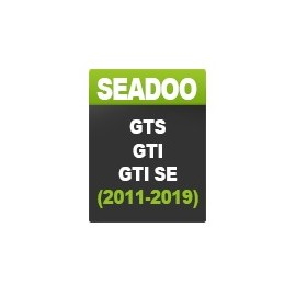 Seadoo GTS / GTI / GTI SE (hasta el 2019)